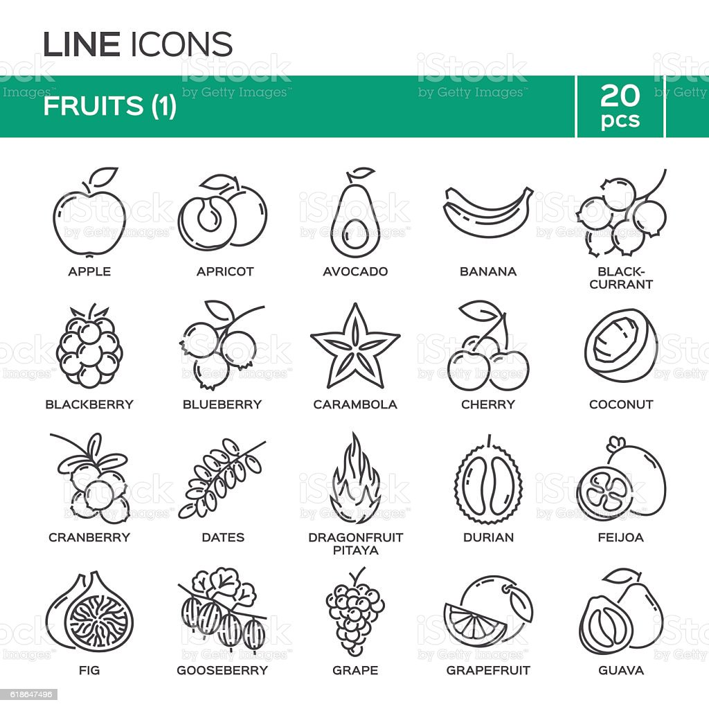Set of fruit thin line icons in alphabetical order. vector art illustration