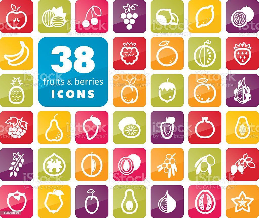 Set of Fruits and Berries icons vector art illustration