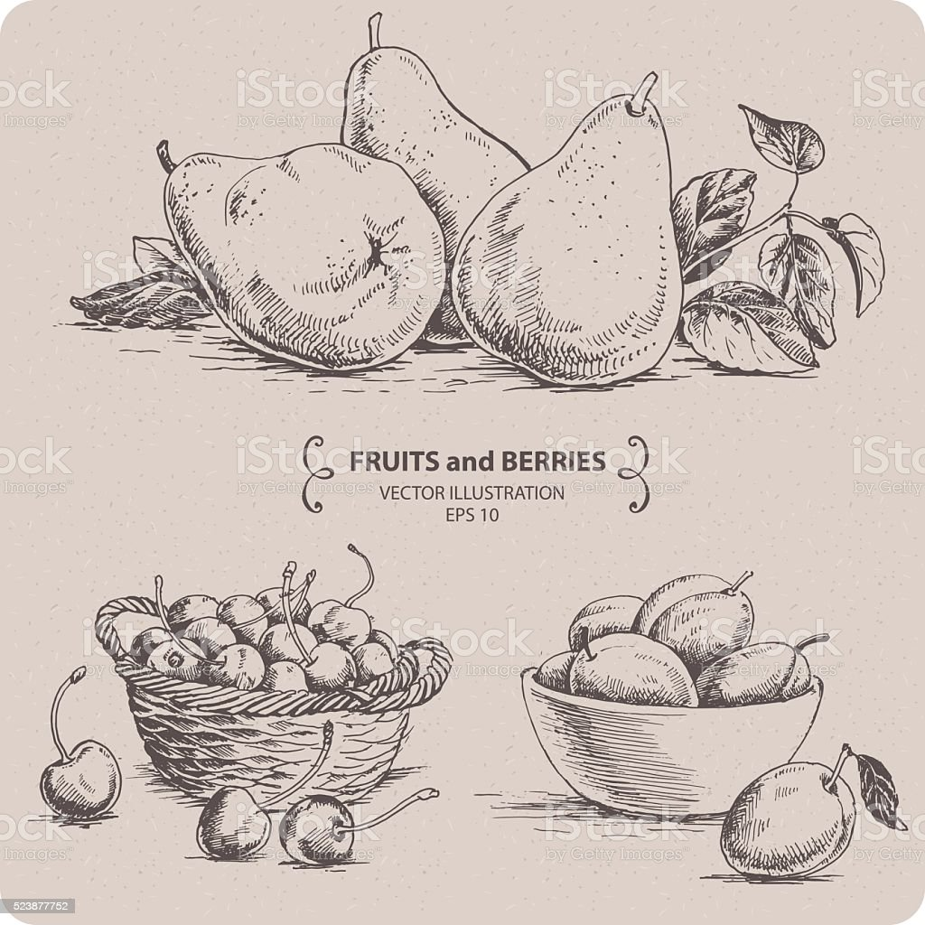 Set of fruits and berries - Pear, Plum and Cherry. vector art illustration
