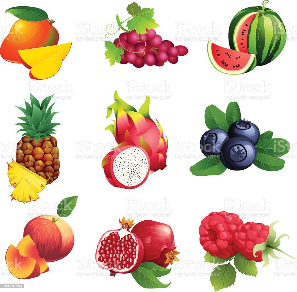 Set of fruits and berries with leaves vector art illustration