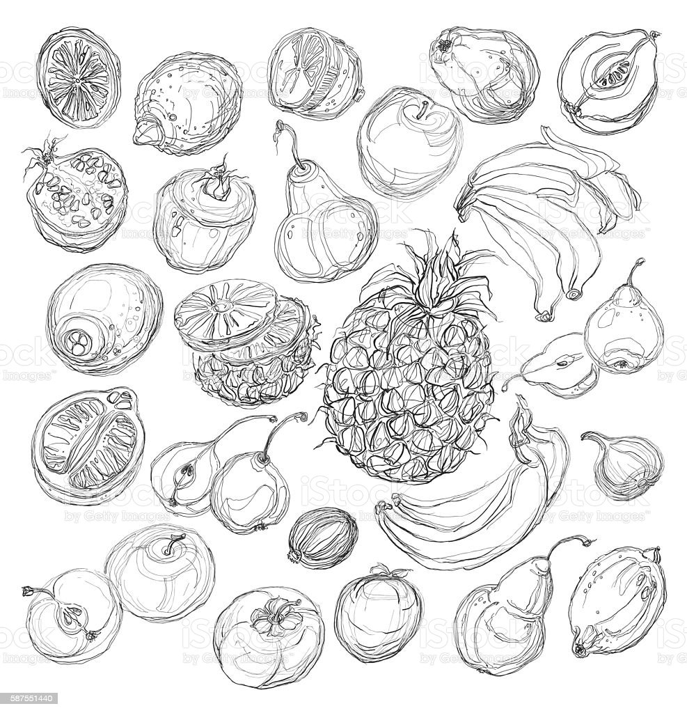 Set of fruits. Freehand drawing. vector art illustration