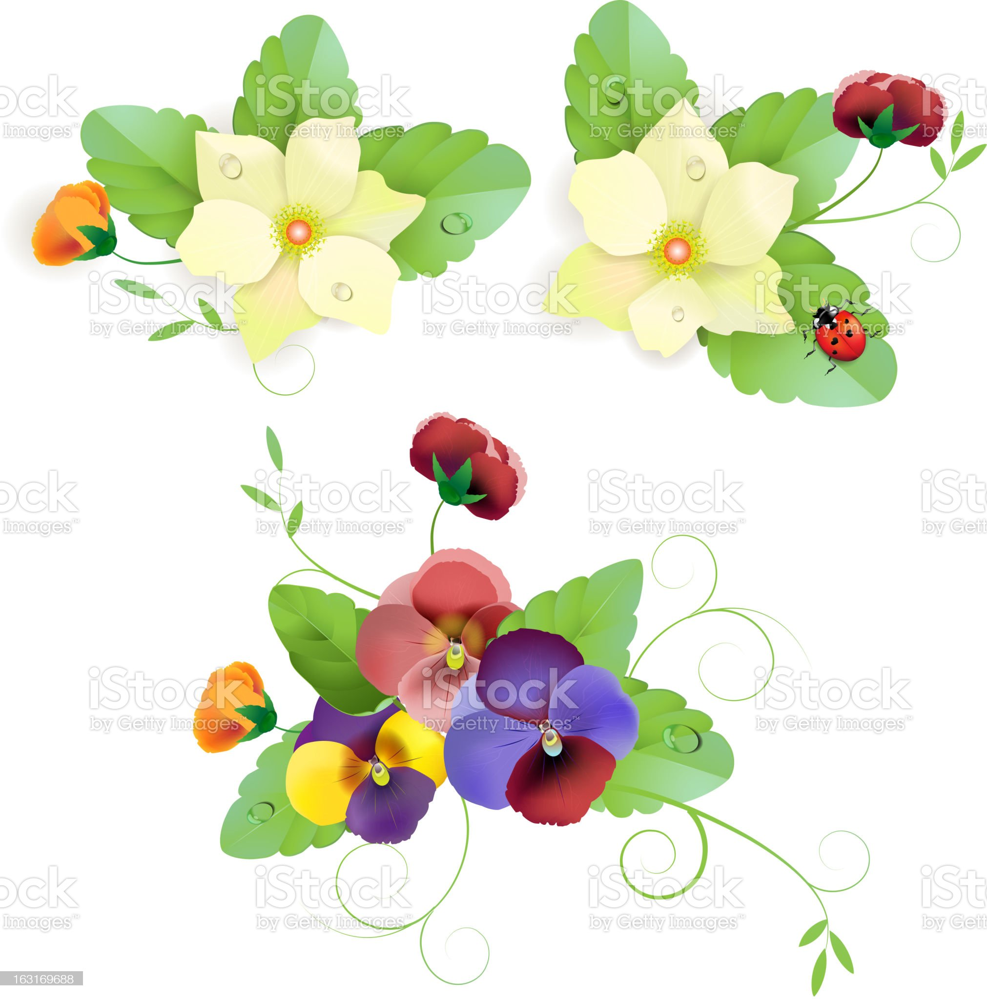 Set of gentle floral royalty-free stock vector art