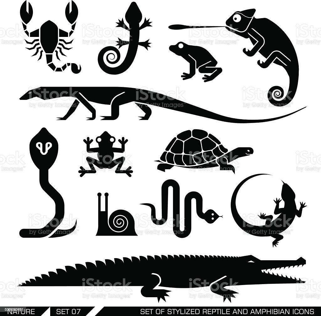 Set of geometrically stylized reptiles and amphibians icons vector art illustration