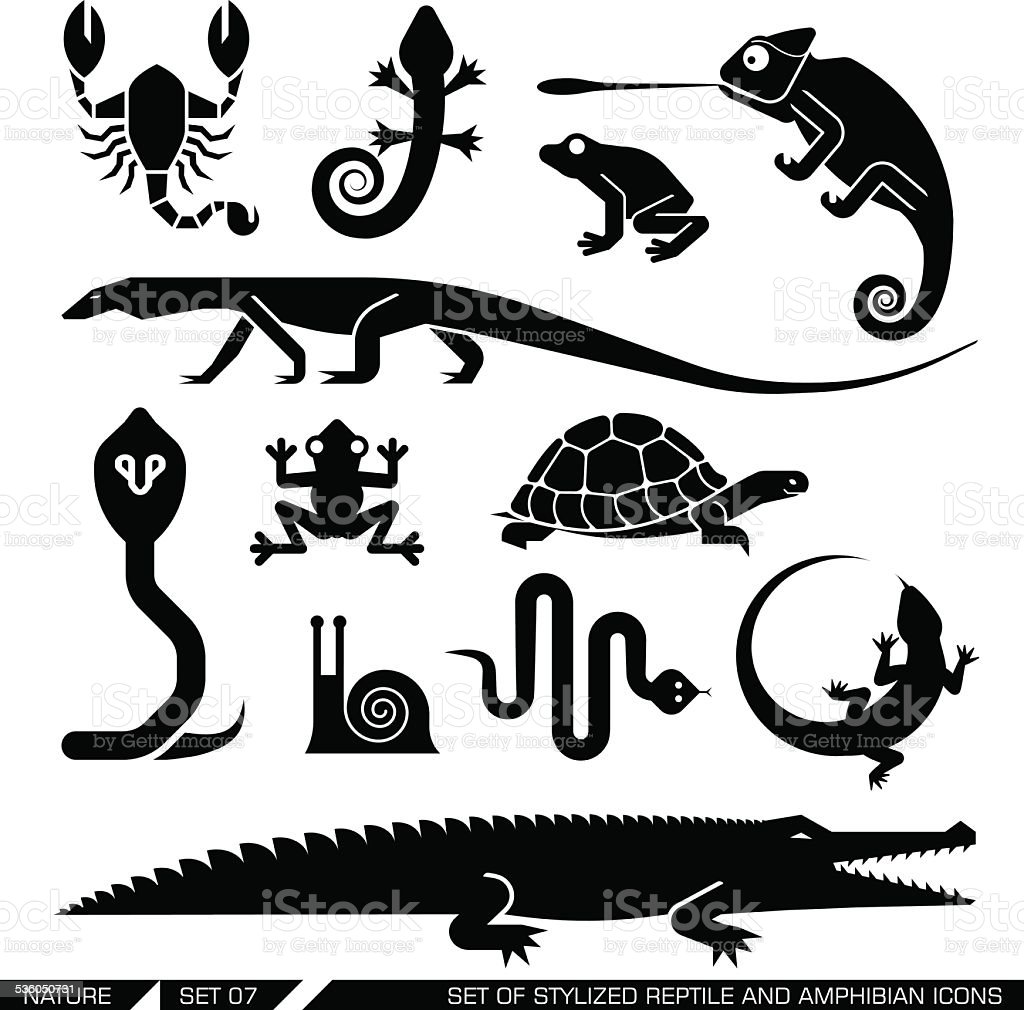 Set of geometrically stylized reptiles and amphibians icons vector art illustration