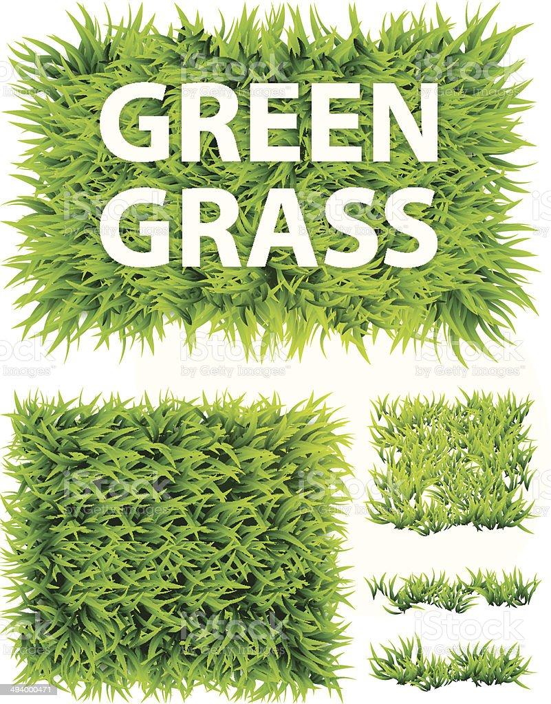 Set Of Grass, Green Grass - Illustration vector art illustration