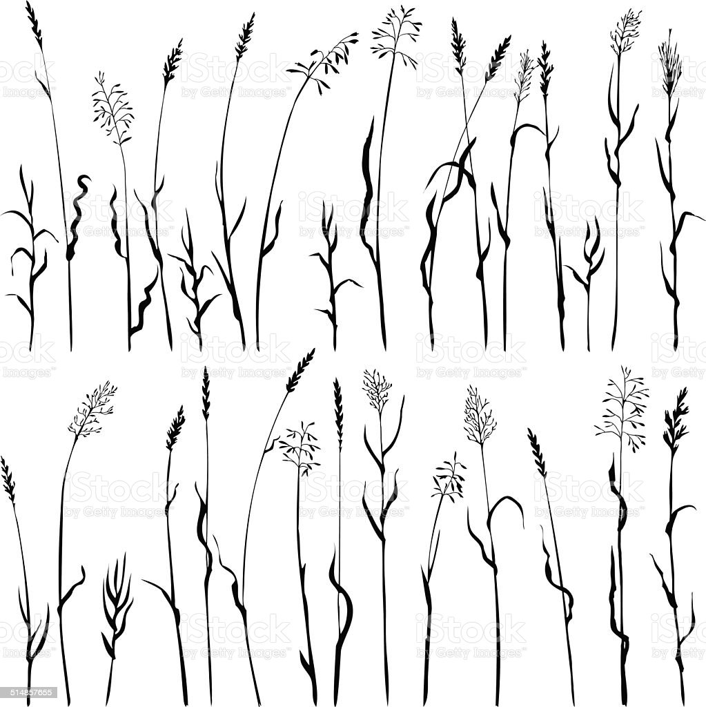 Set of grass silhouettes vector art illustration