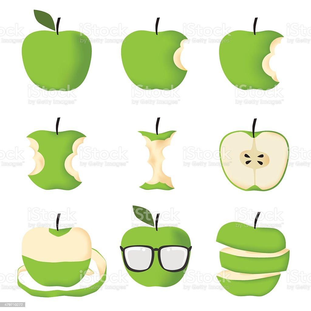 Set of Green apple vector art illustration