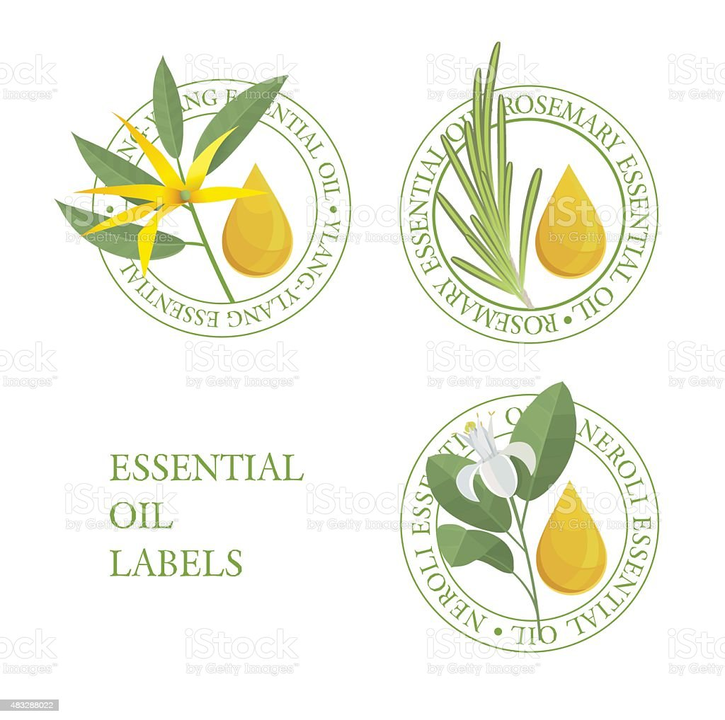 Set of green essential oils labels vector art illustration