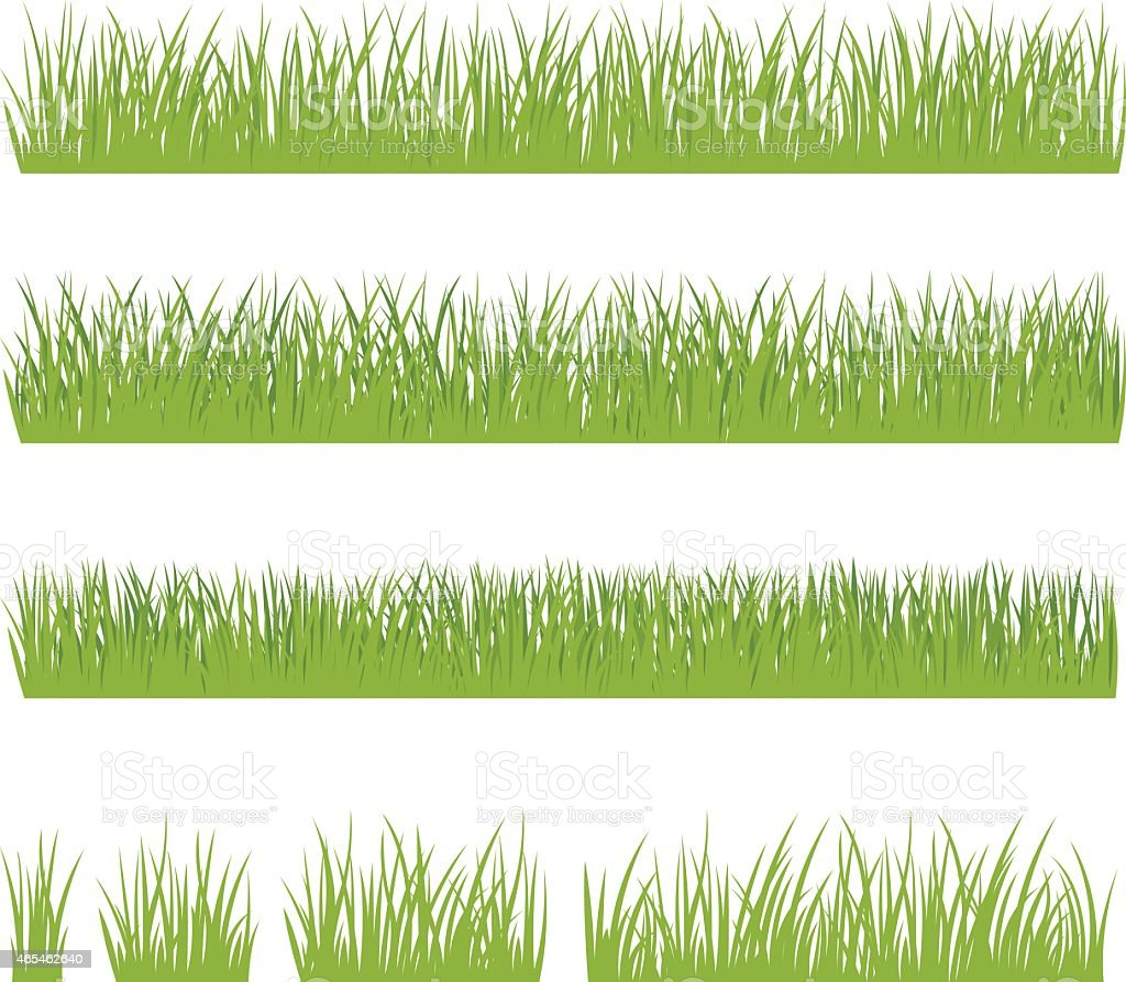 Set of green grass isolated on white background vector art illustration
