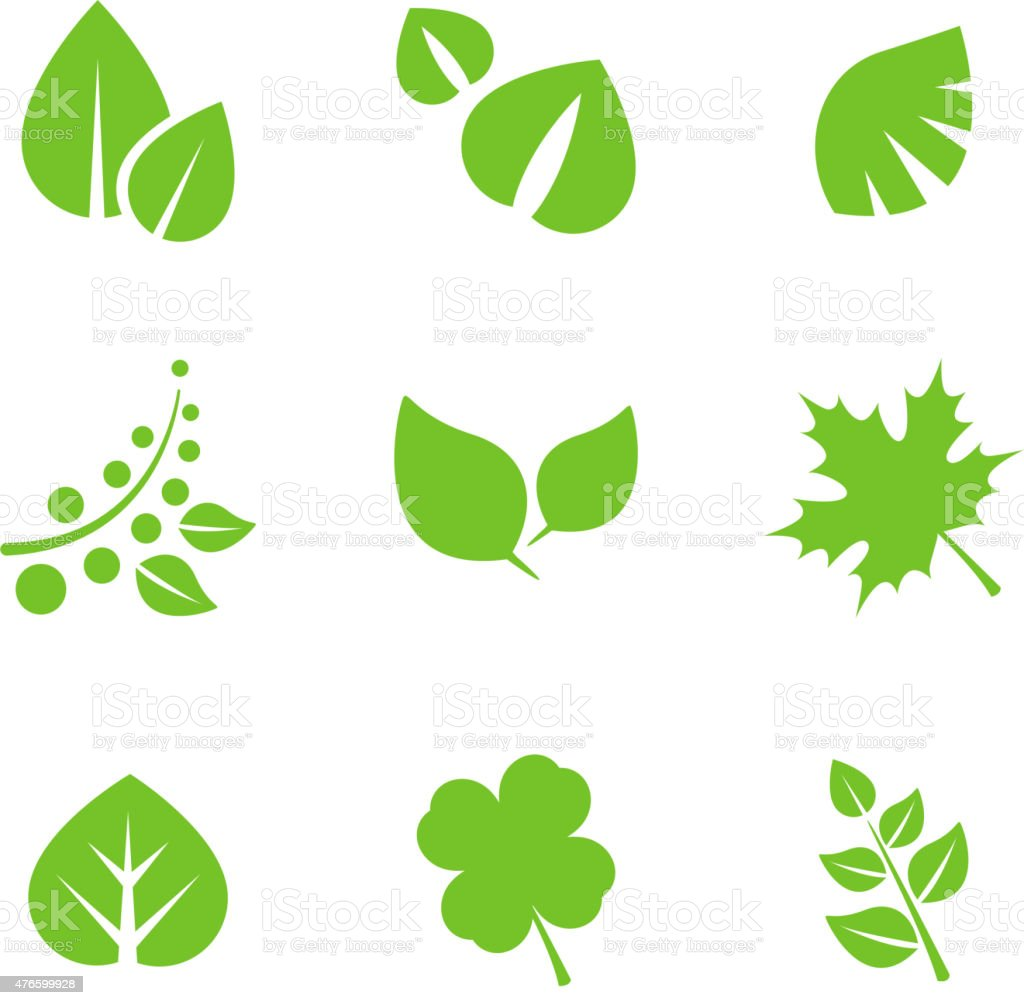 Set of Green Leaves Design Elements vector art illustration