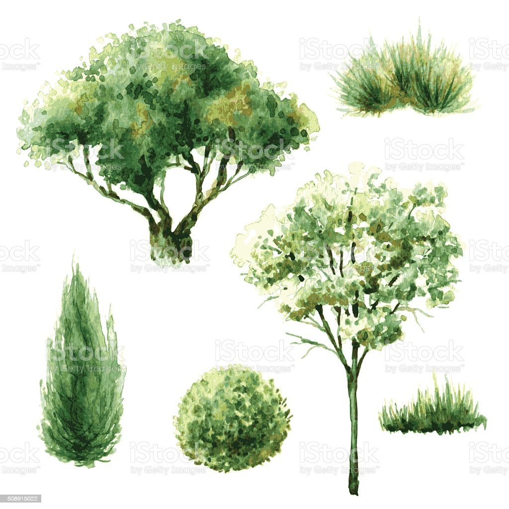 Set of green trees and bushes. vector art illustration