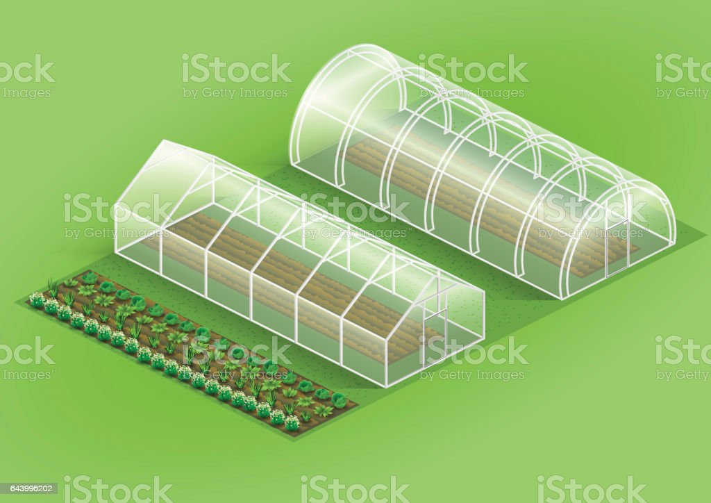 Set of greenhouses for plants vector art illustration