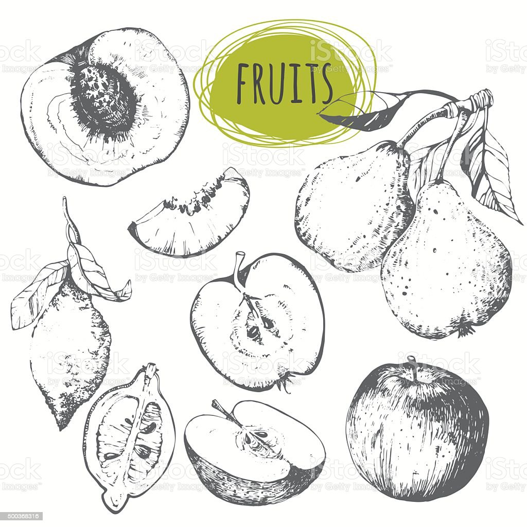Set of hand drawn apple, lemon, pear, peach. Sketch fruits. vector art illustration