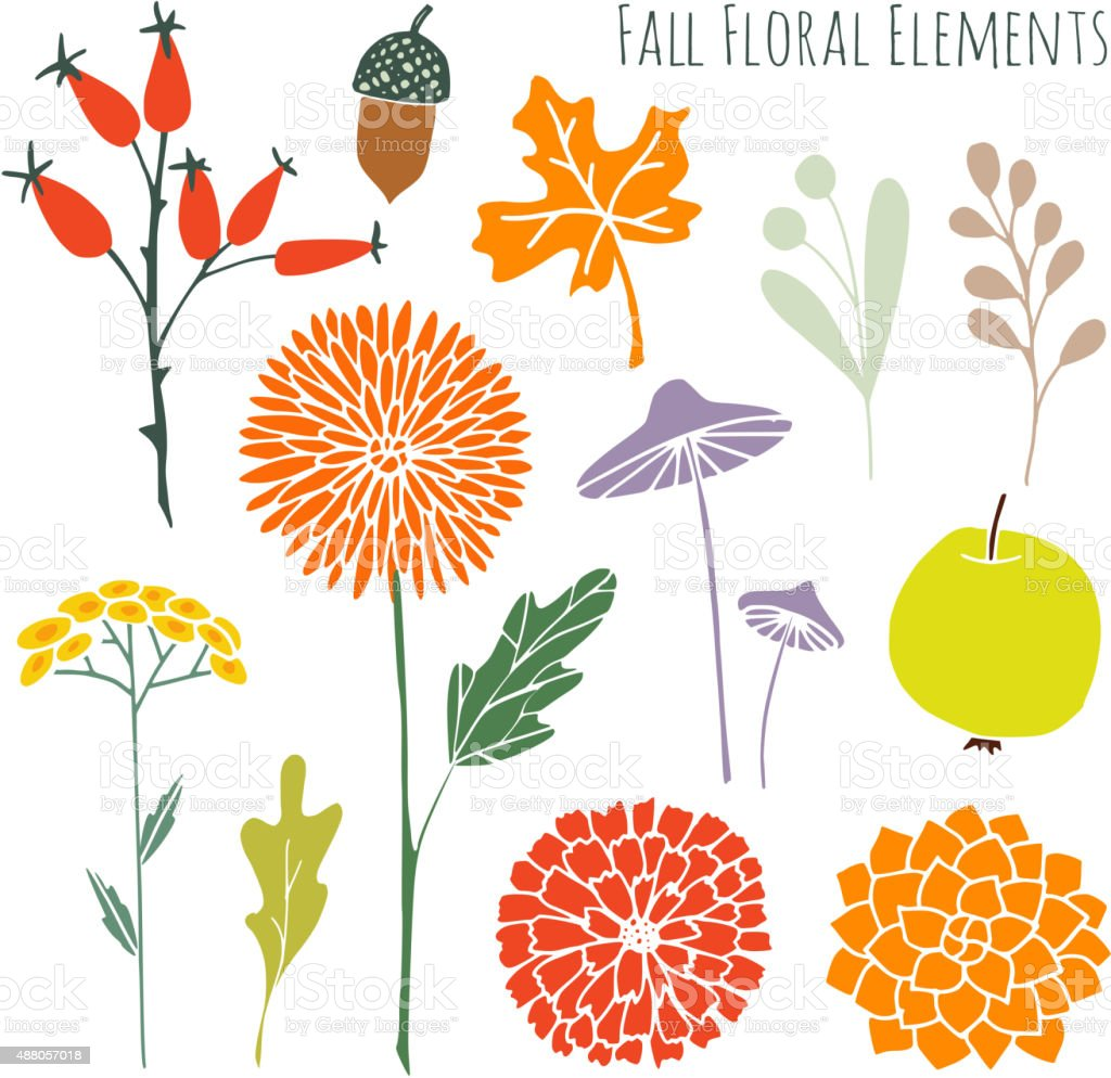 Set of hand drawn autumn fall floral graphic elements vector art illustration