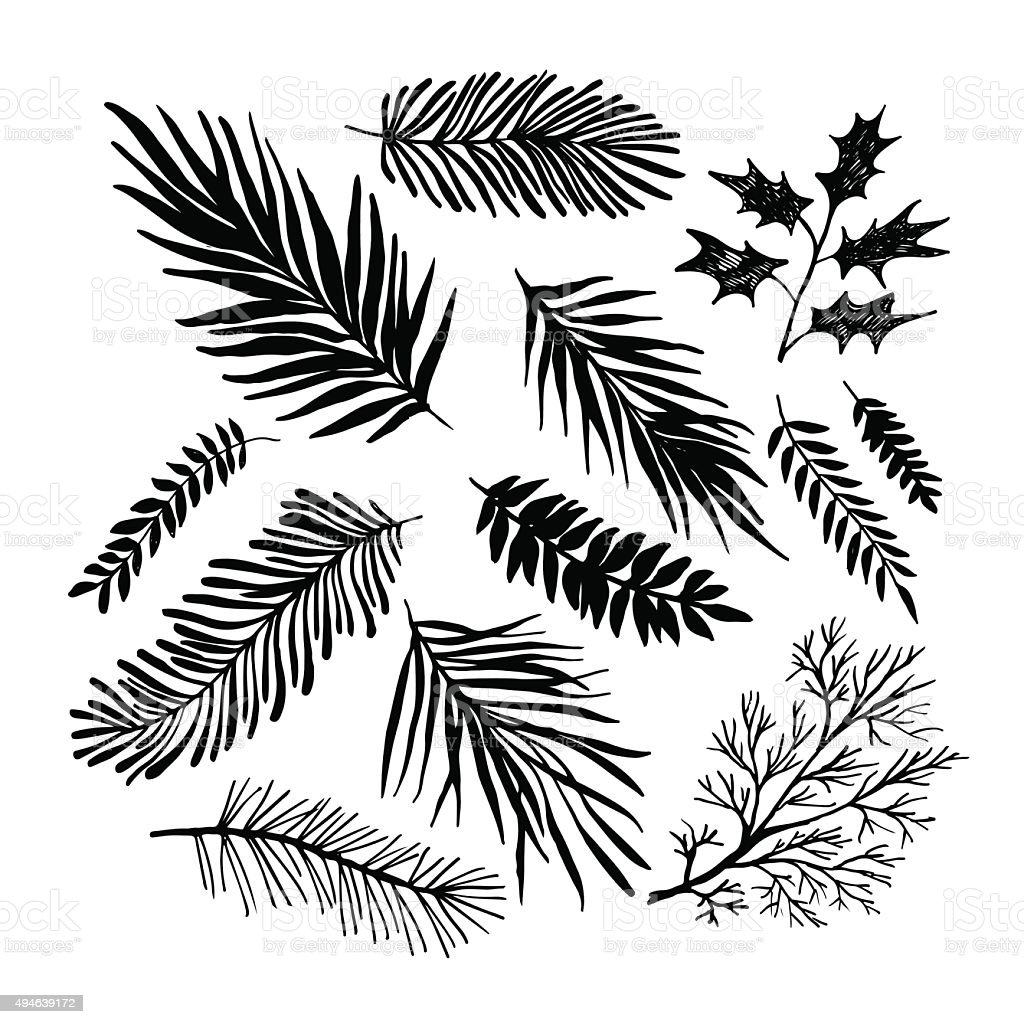 Set of hand drawn branches. vector art illustration