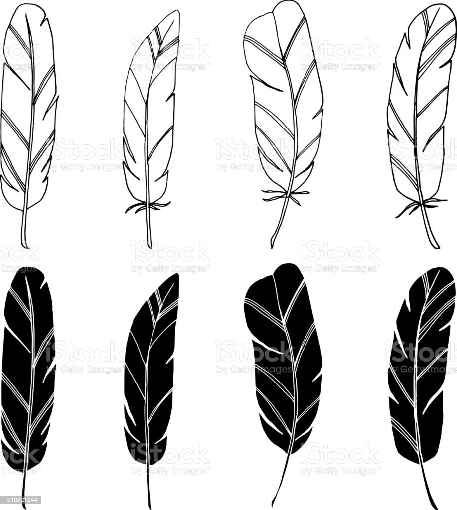 Set of hand drawn feathers, isolated black white vector objects vector art illustration