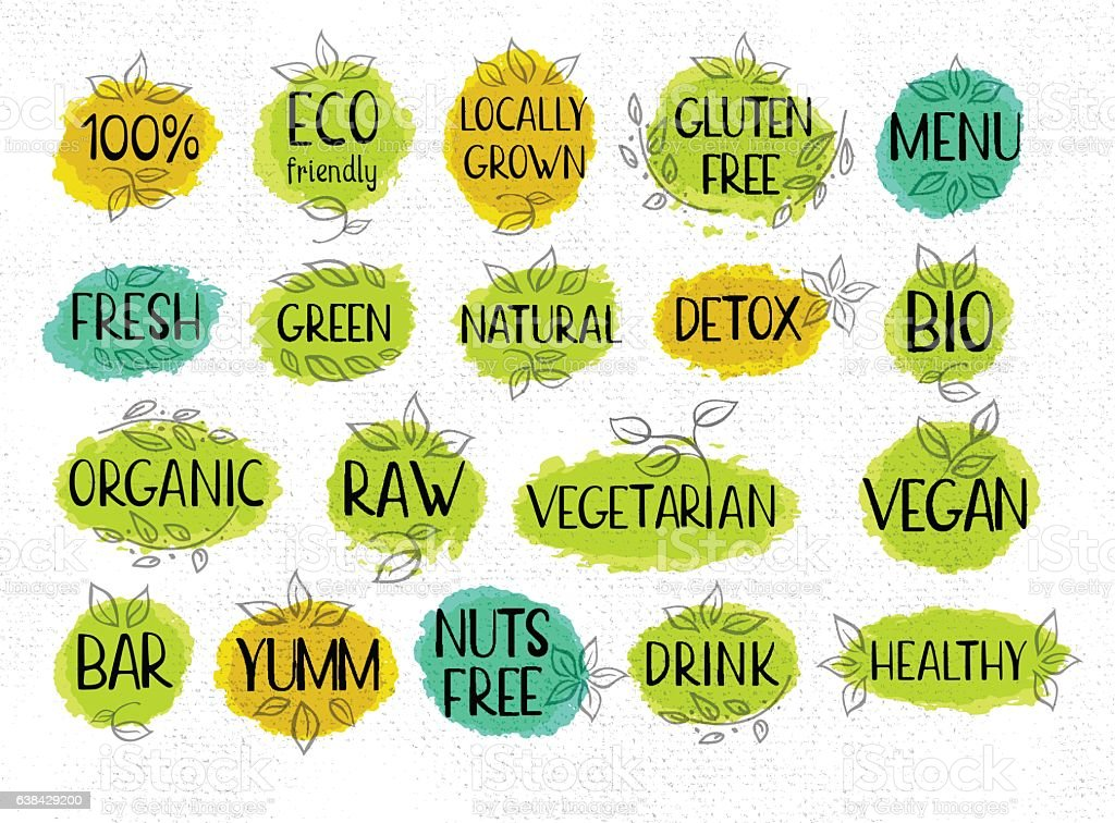 Set of hand drawn labels food, spices. vector art illustration