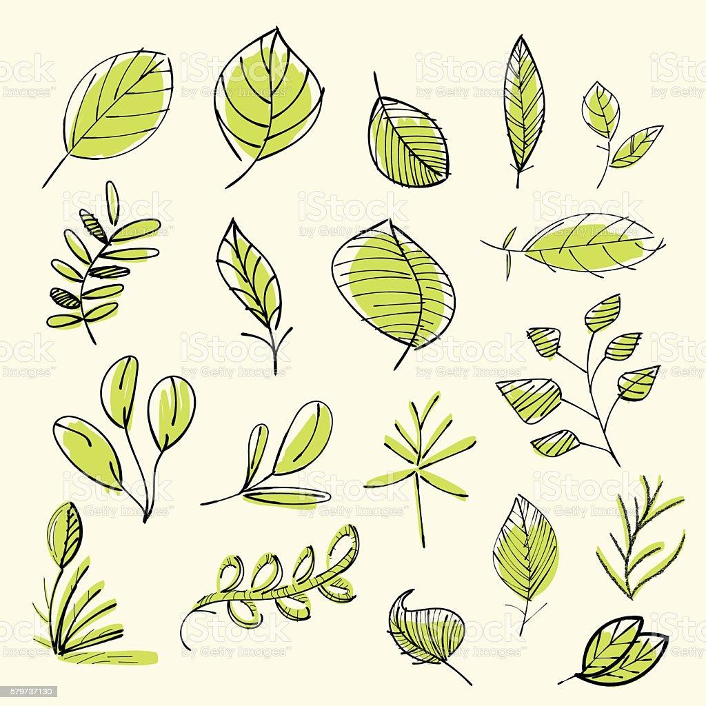 Set of hand drawn leaves vector art illustration