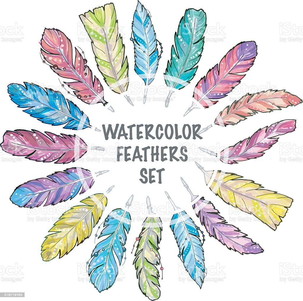 Set of hand drawn sketch watercolor feathers. vector art illustration