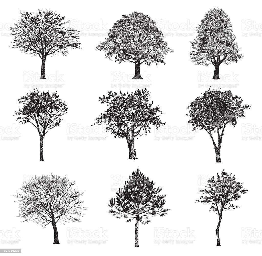 Set of hand drawn trees. Drawing illustration vector. vector art illustration