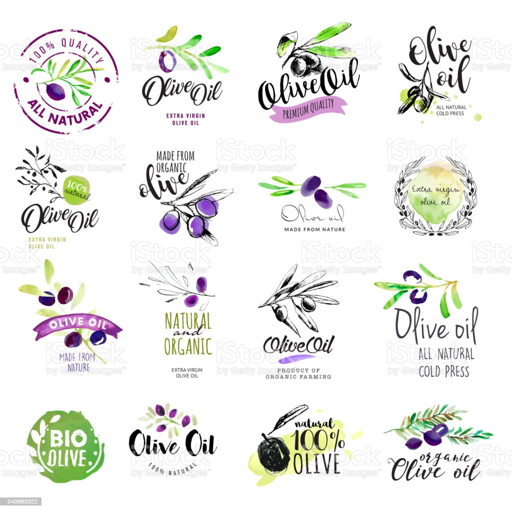 Set of hand drawn watercolor olive oil labels and stickers vector art illustration