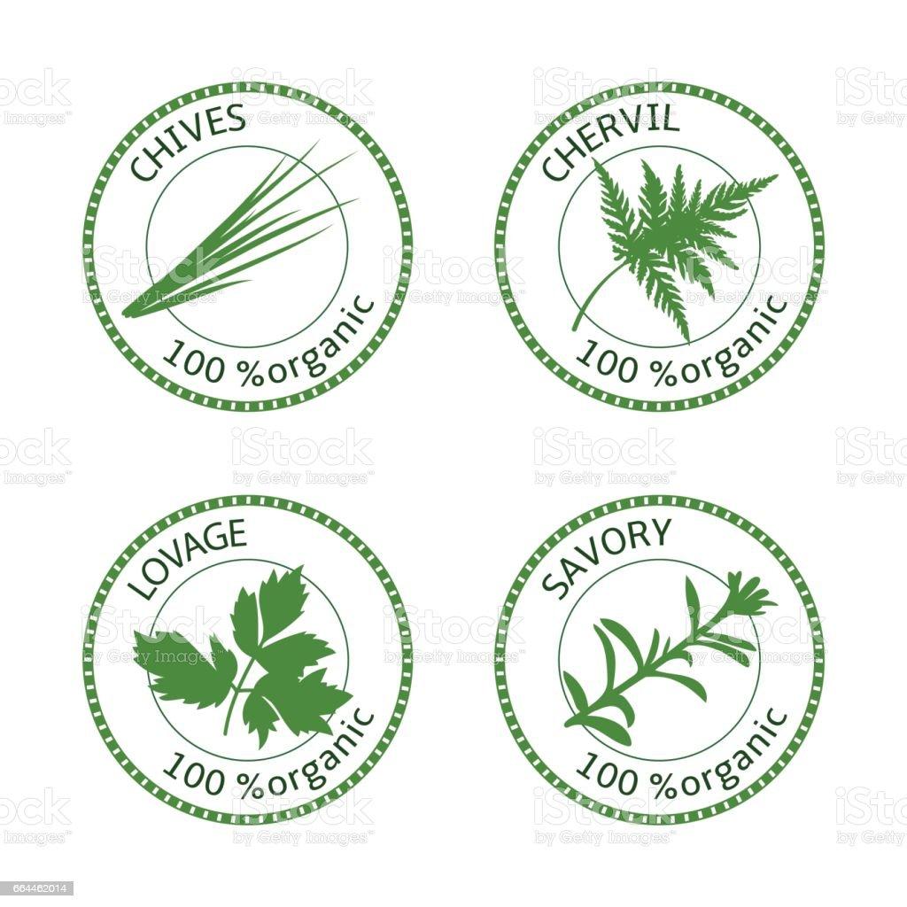 Set of herbs labels. 100 organic. Vector vector art illustration