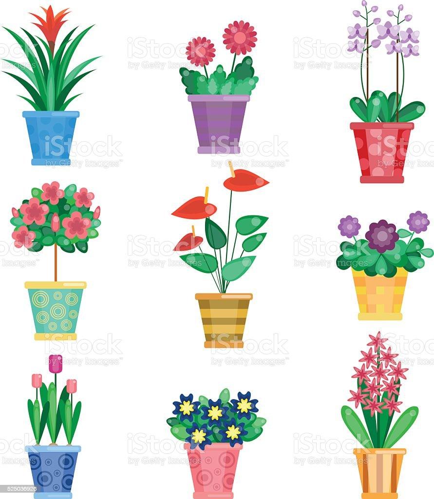 Groupe de plante dintérieur intérieur de maison des fleurs stock vecteur libres de
