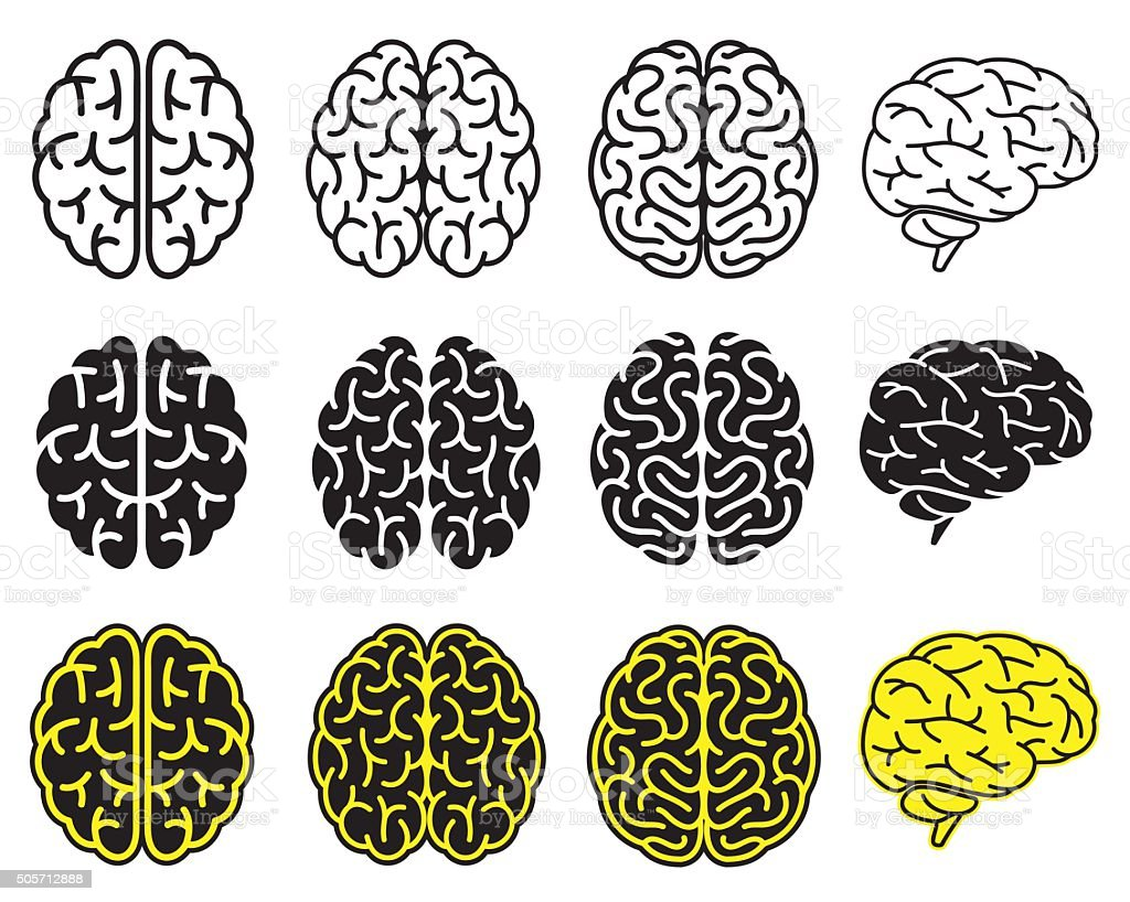 Set of human brains. Vector illustration. vector art illustration