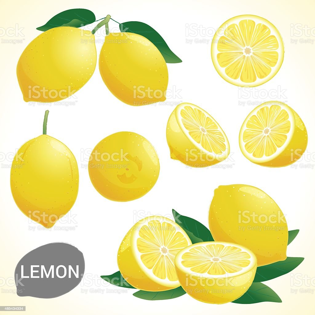 Set of lemon in various styles vector format vector art illustration