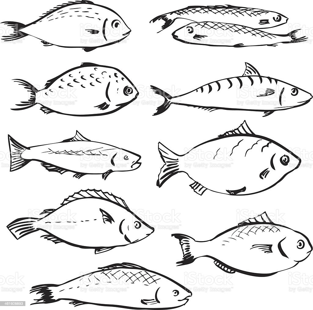 set of linear drawing fishes royalty-free stock vector art
