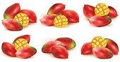 Set of mango illustration