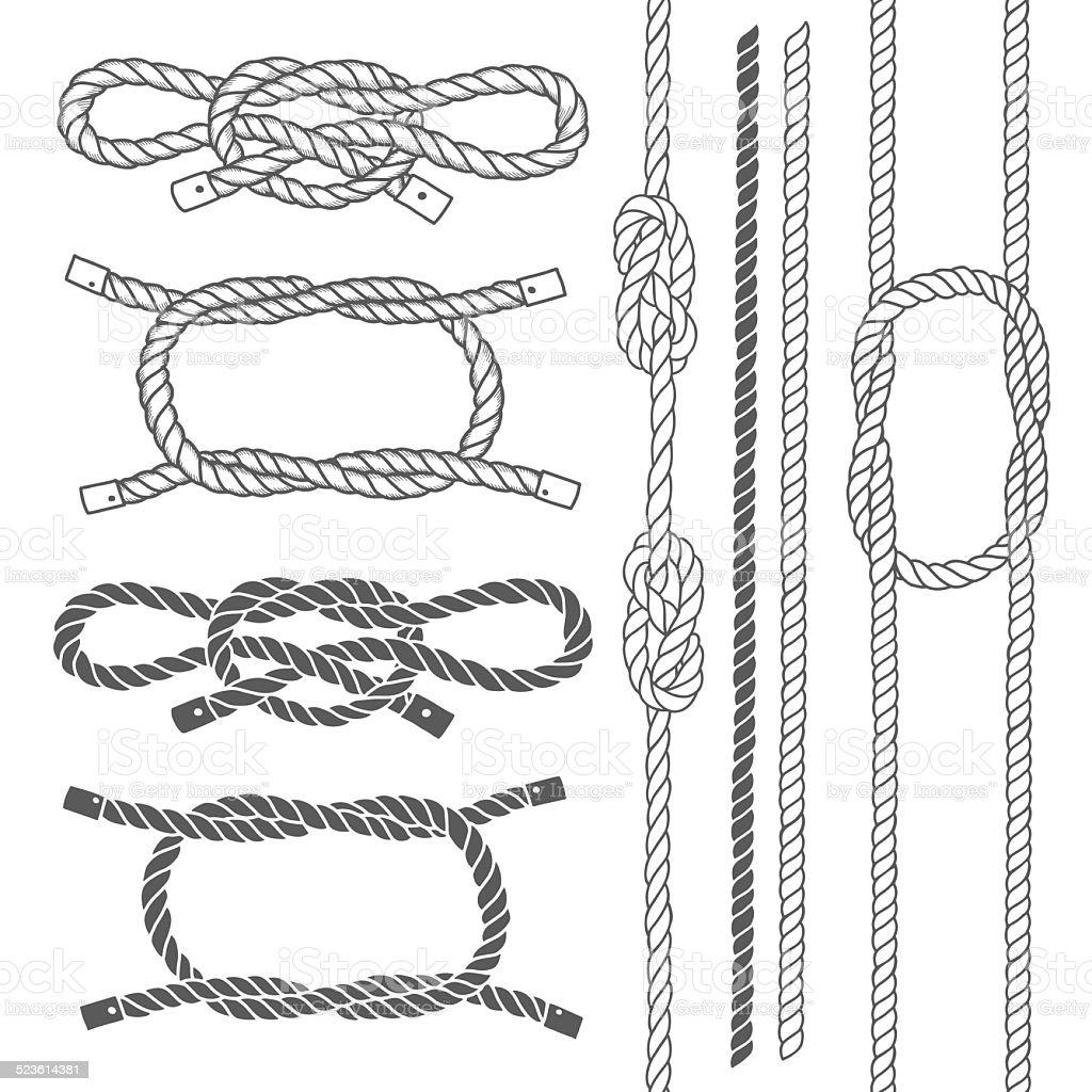 Set of marine rope, knots. Vector elements . vector art illustration
