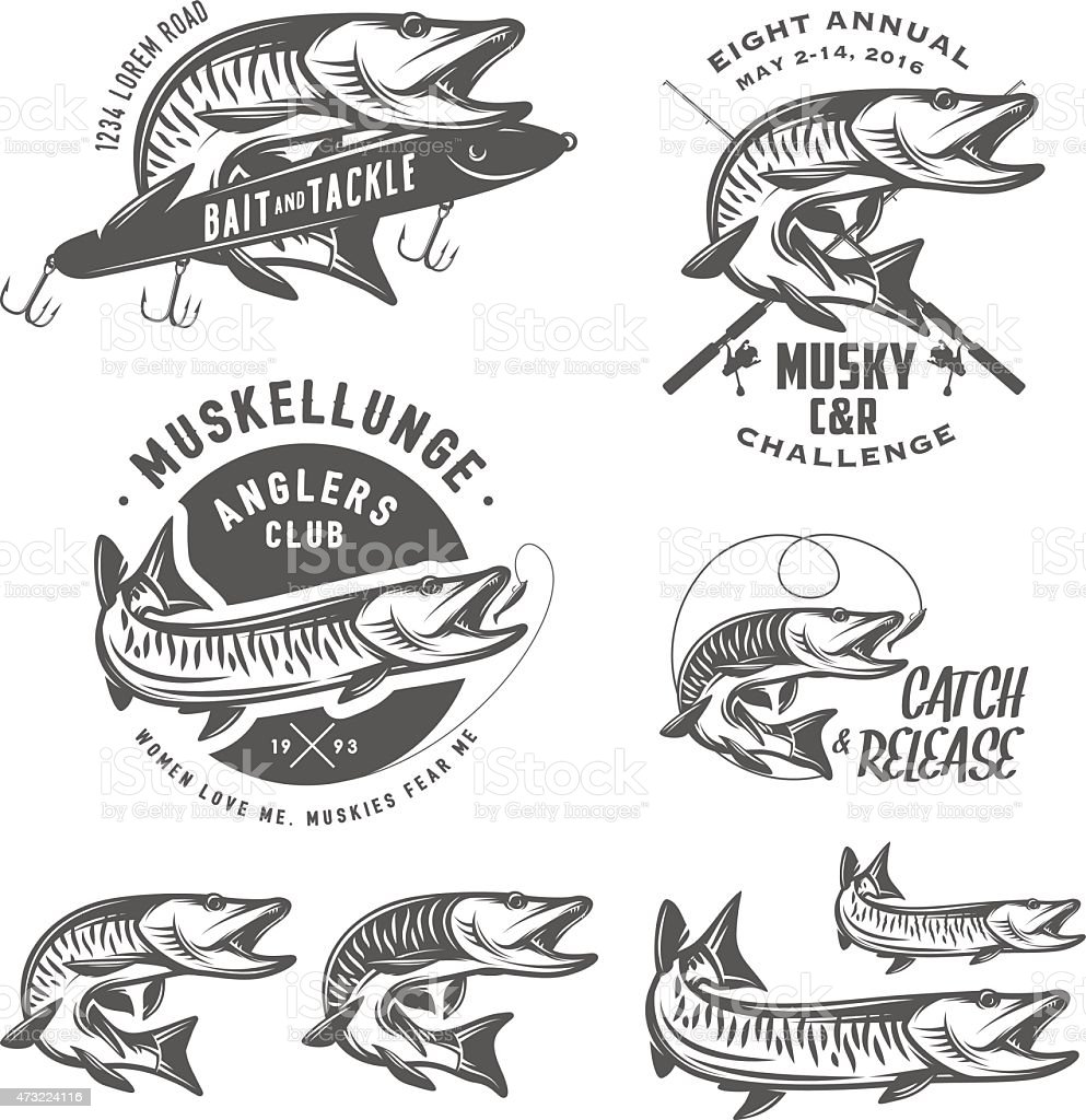 Set of muskellunge musky fishing design elements vector art illustration