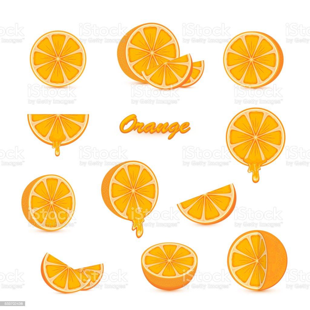 Set of oranges on white background vector art illustration
