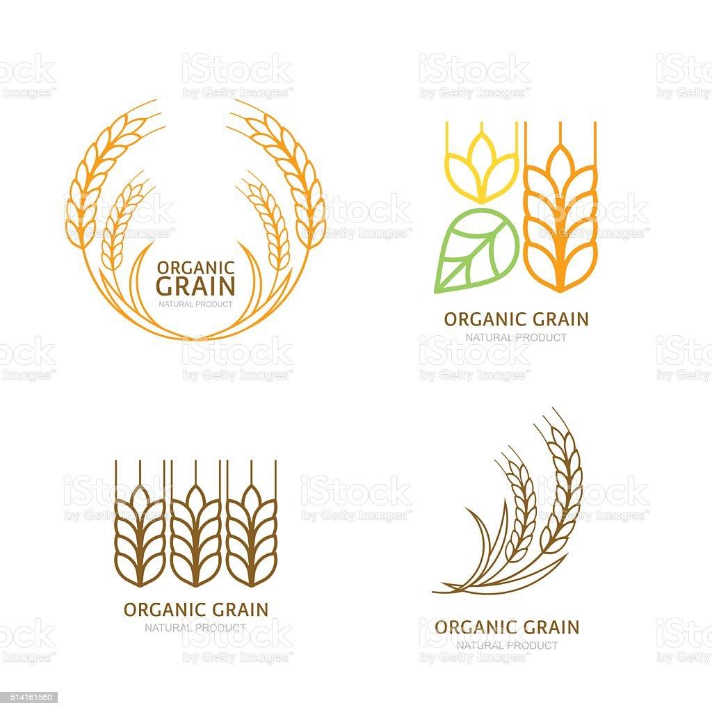 Set of organic wheat grain outline icons. vector art illustration