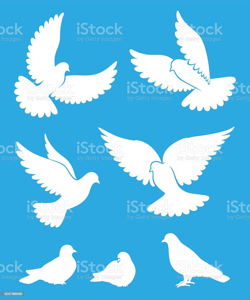 Set of pigeon silhouettes vector art illustration