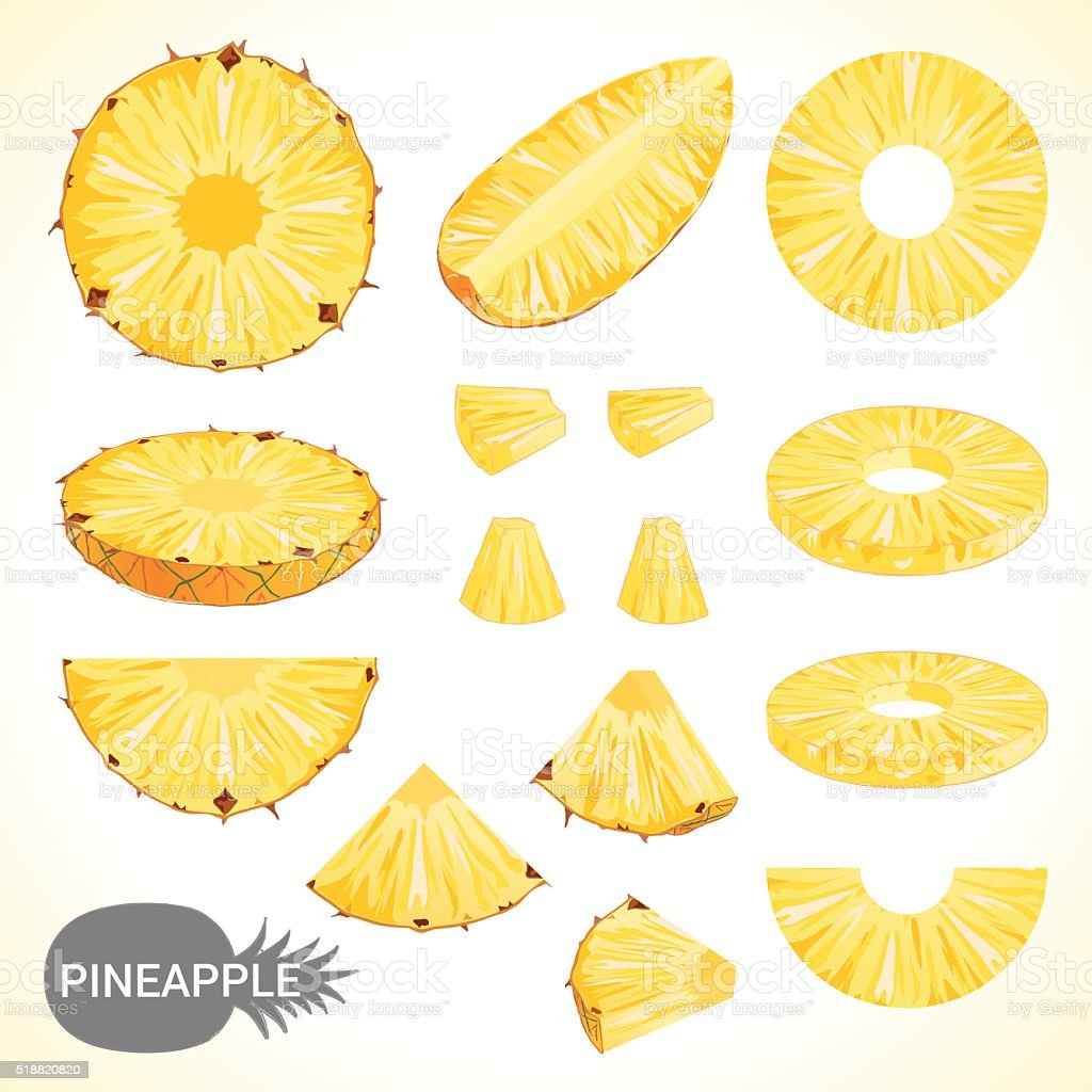 Set of pineapple in various styles vector format vector art illustration