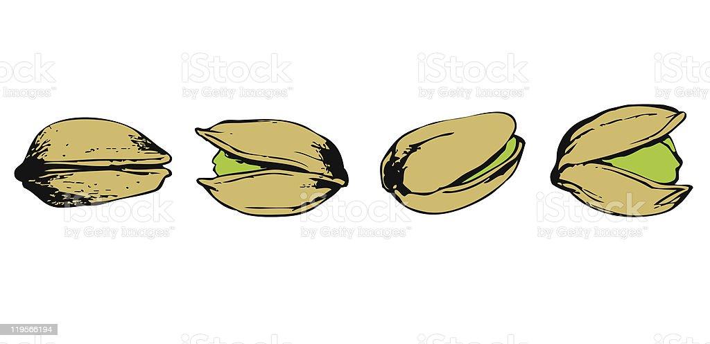 set of pistachio vector art illustration