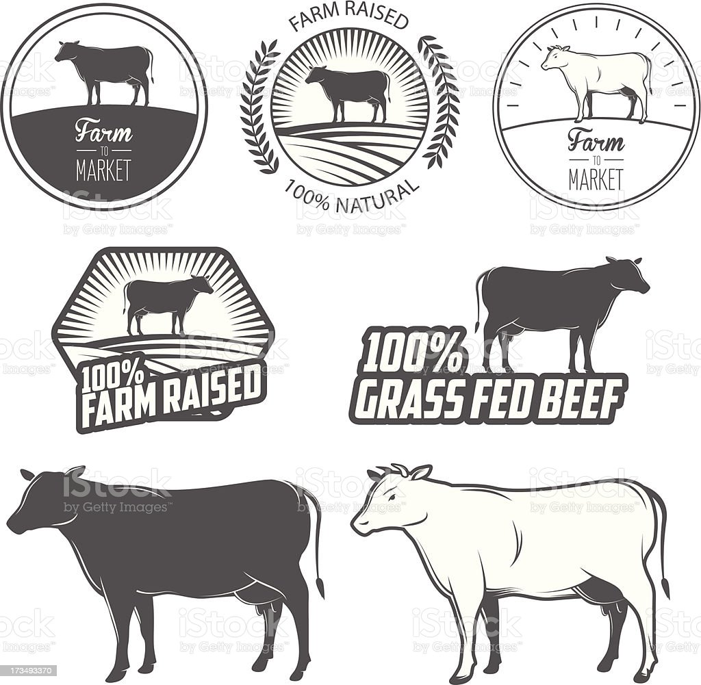 Set of premium beef labels, badges and design elements vector art illustration