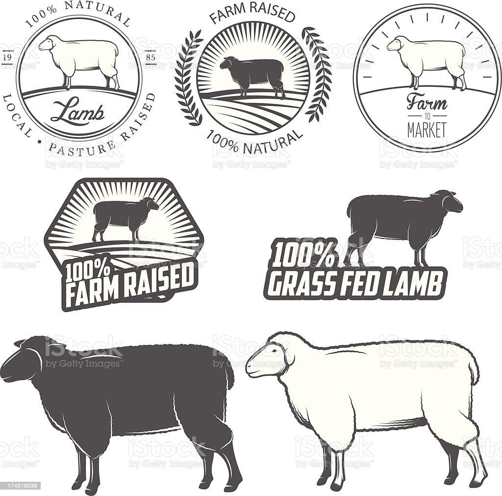 Set of premium lamb labels, badges and design elements vector art illustration
