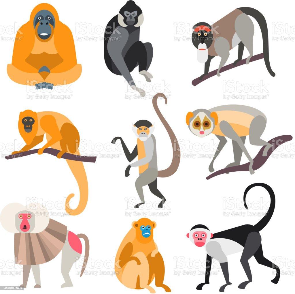 Set of Primates and Monkeys. Vector Illustration vector art illustration
