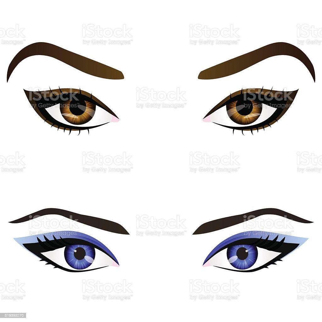 Set of realistic cartoon vector female eyes and eyebrows vector art illustration