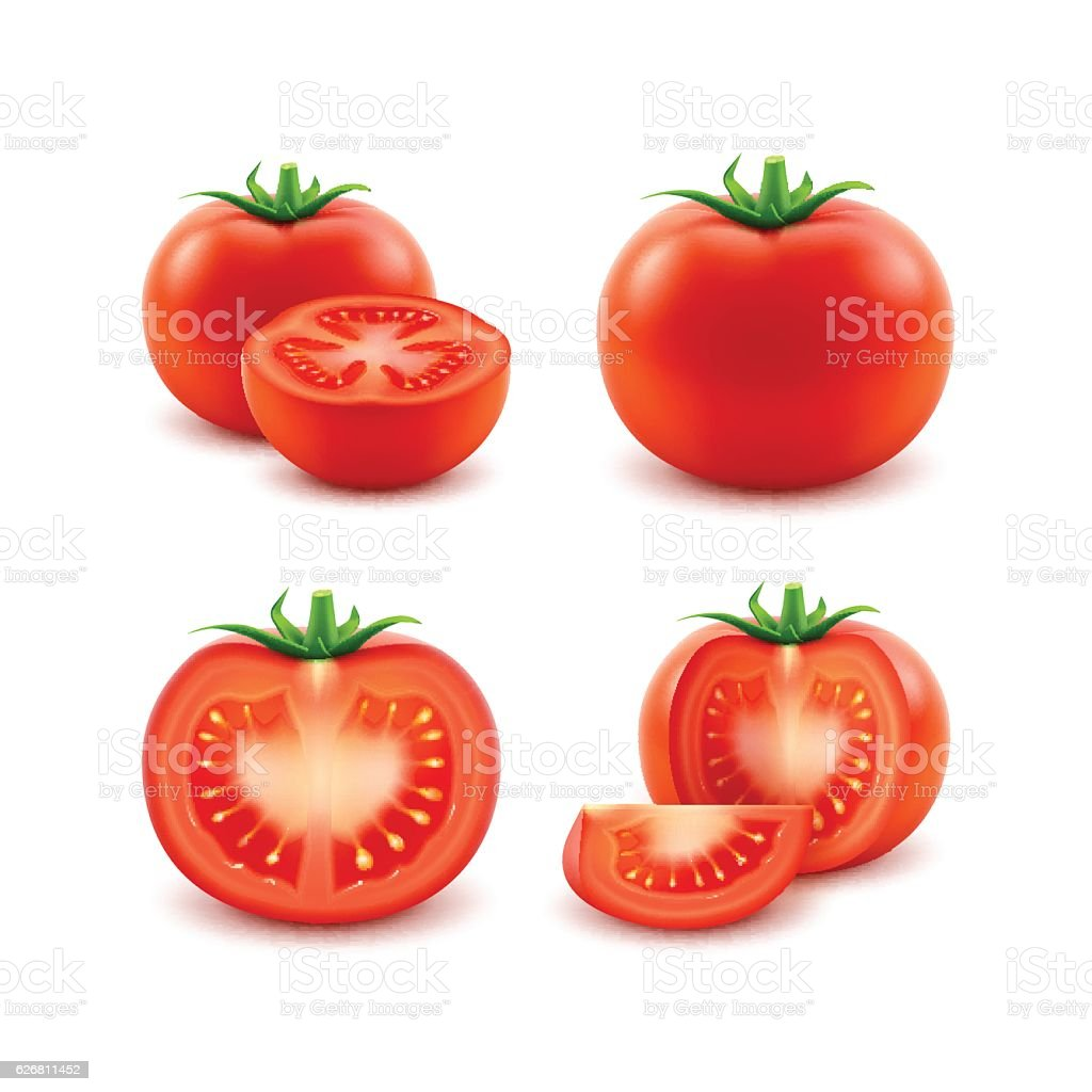 Set of Red Fresh Cut Whole Tomatoes Close up Isolated vector art illustration
