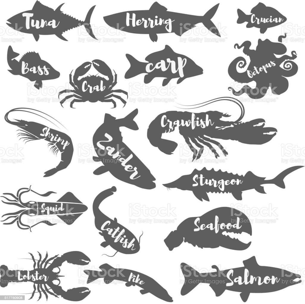 Set of seafood silhouettes with lettering. vector art illustration