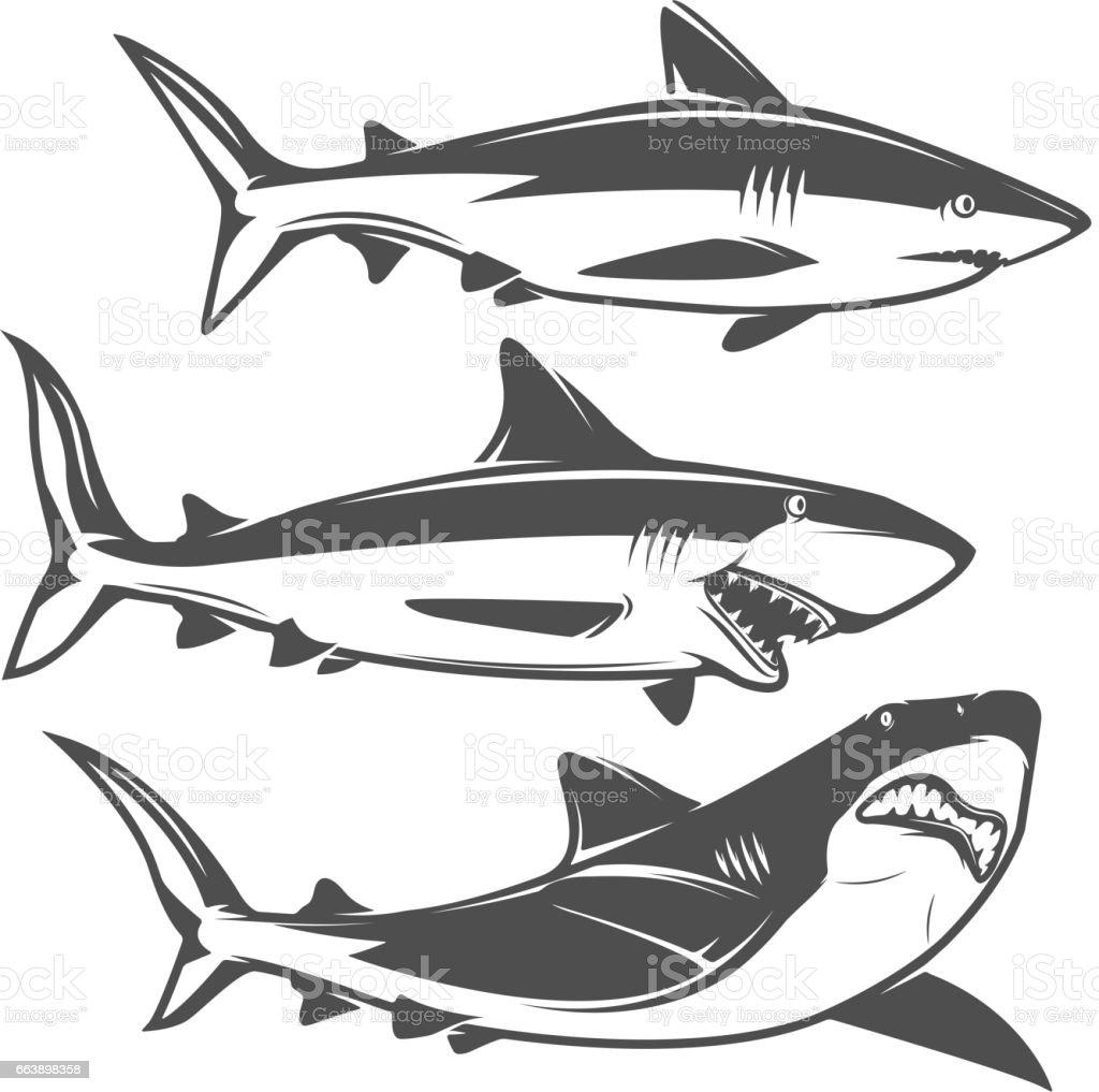Set of shark icons isolated on white background. vector art illustration
