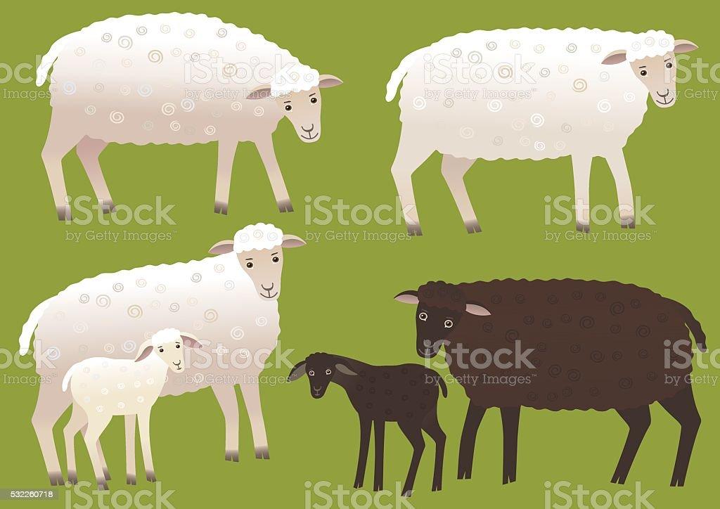 Set of sheep vector art illustration