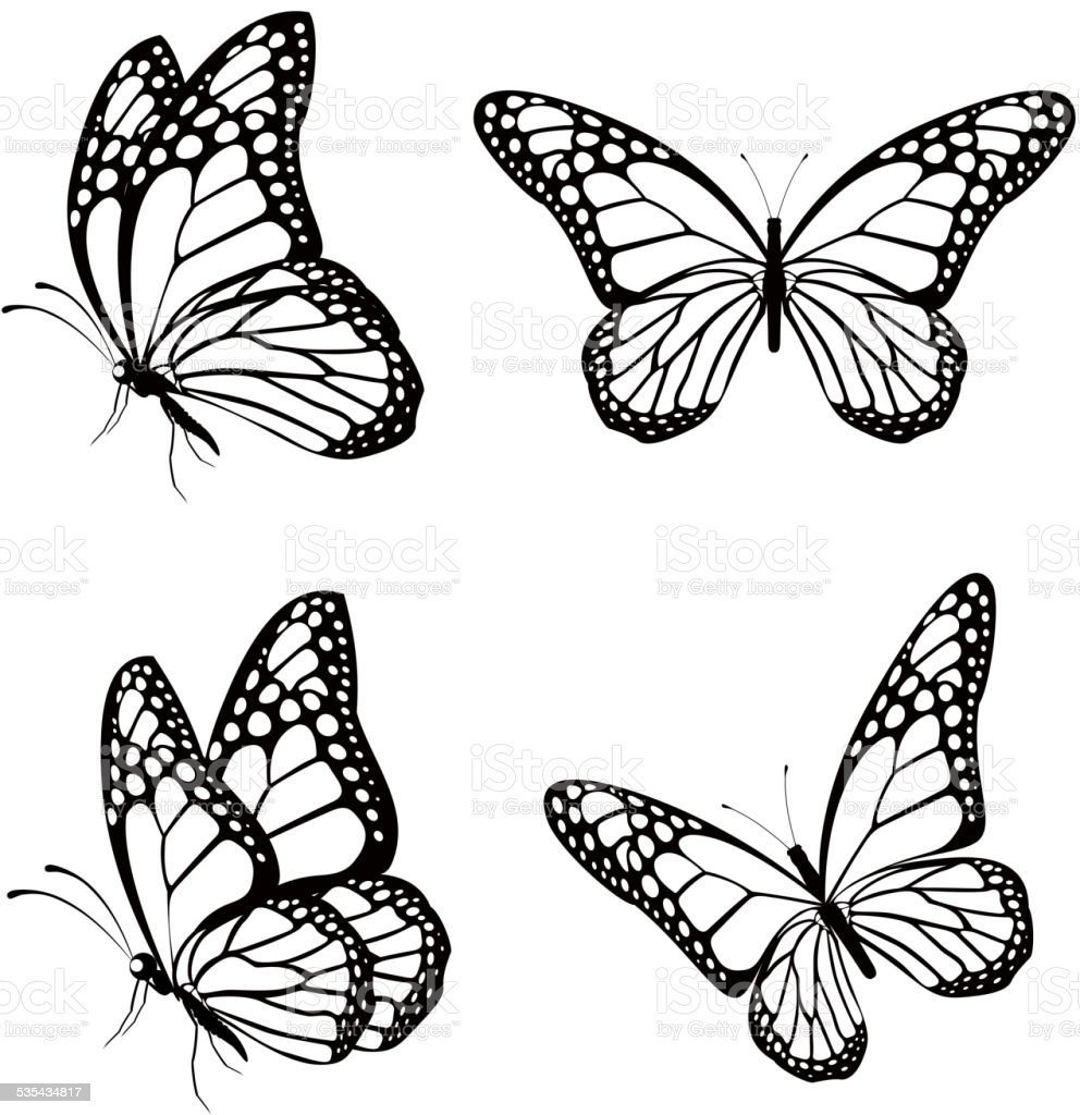 Set of Silhouette Butterflies Isolated for Spring vector art illustration