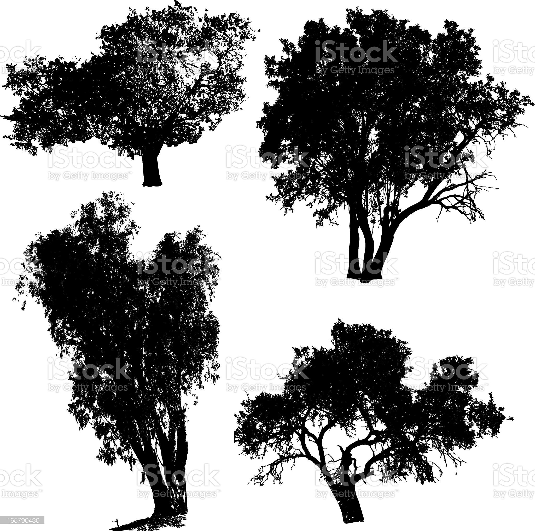 Set of silhouetted black tree images on white royalty-free stock vector art