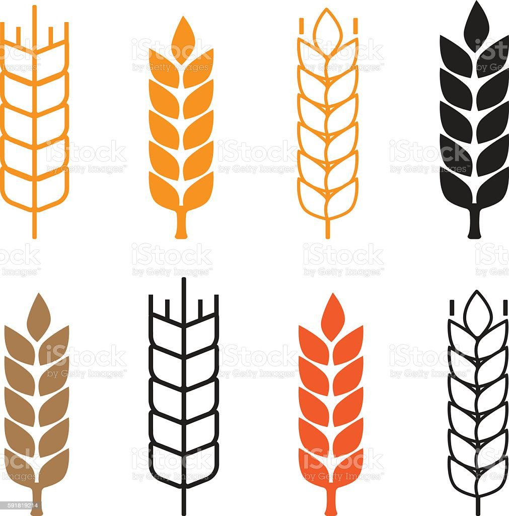 Set of simple wheat ears icons vector art illustration