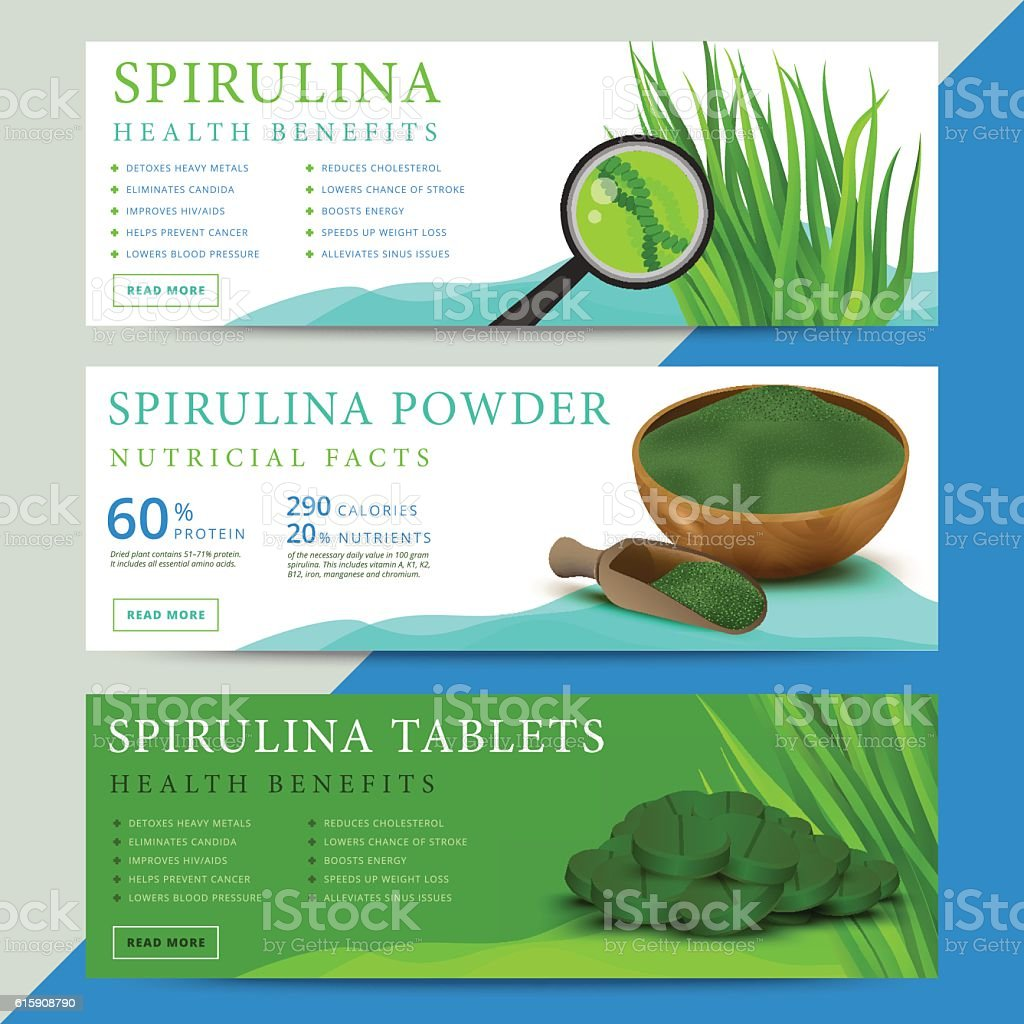 Set of spirulina algae information website vector art illustration